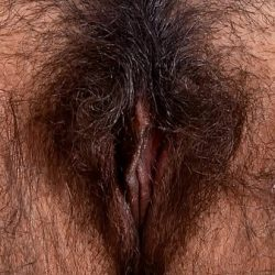 Female textures – From around the world 3 (HD 1080p)(Vagina close up hairy sex pussy)(by rumesco)