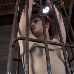 Girl torment porn
