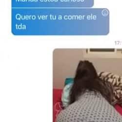 Conversa no Skype